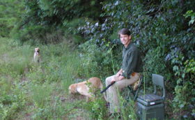 Dove hunting with Dutch and Gracie – 2004